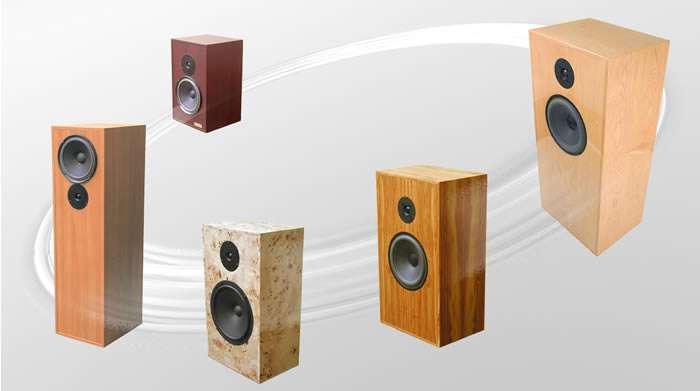 wallspeaker01.jpg